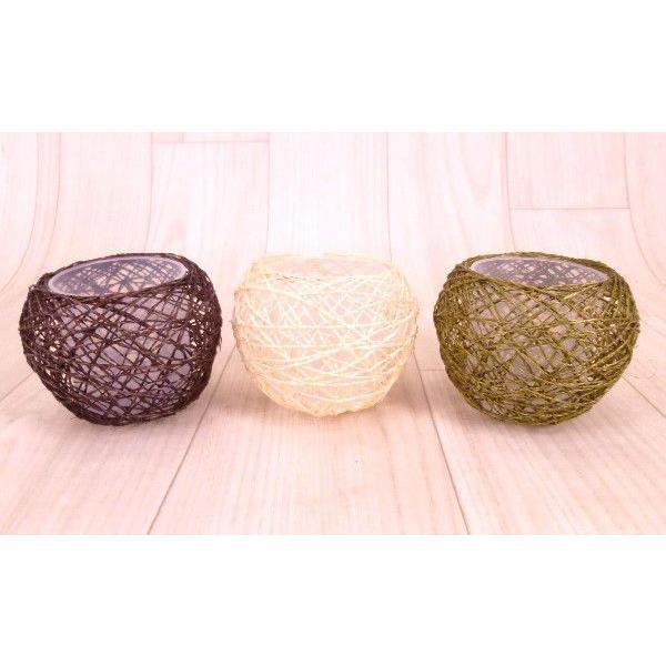 麻ボールMの鉢 3号苗 観葉植物 ハイドロカルチャー 水耕栽培 インテリアグリーン
