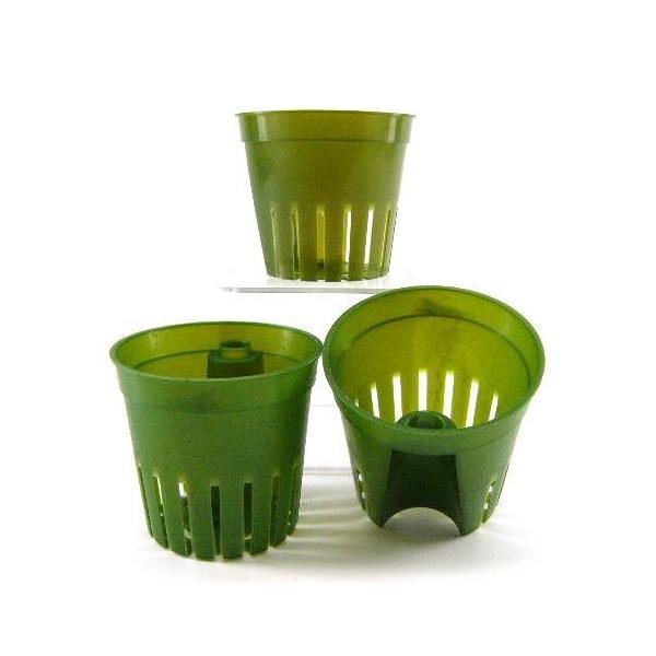 インナーポット キュート(6Φ) 観葉植物 ハイドロカルチャー 水耕栽培 インテリアグリーン