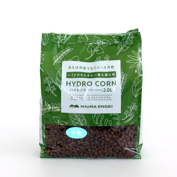 ハイドロコーン 中粒 2L 観葉植物/ハイドロカルチャー/水耕栽培/インテリアグリーン|julli