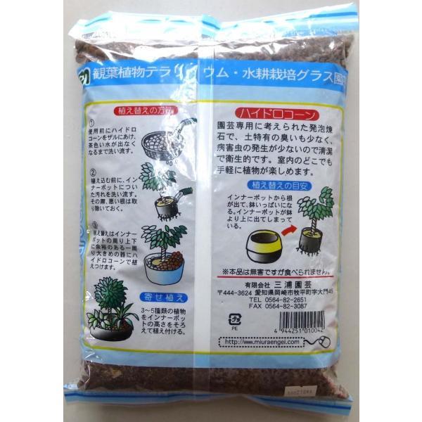 ハイドロコーン 中粒 2L 観葉植物/ハイドロカルチャー/水耕栽培/インテリアグリーン|julli|02