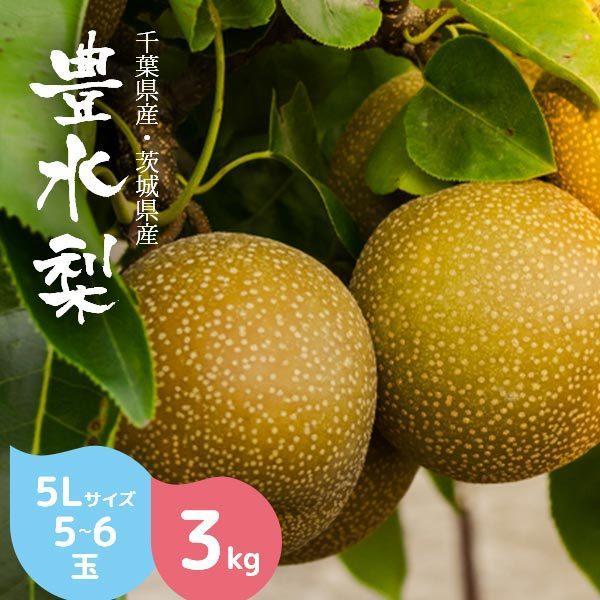 梨 豊水 3kg箱 贈答用 5L 5〜6玉 秀品 千葉県・茨城県産 産地直送
