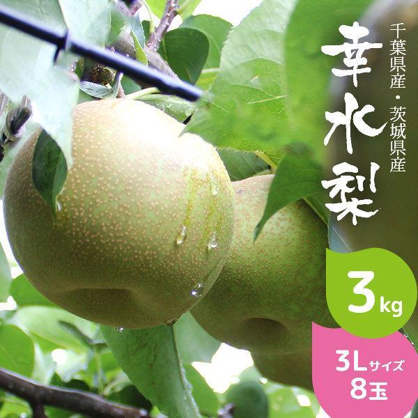 梨 幸水 3kg箱 贈答用 3L 8玉 秀品 梨の生産量日本一の千葉県産 産地直送