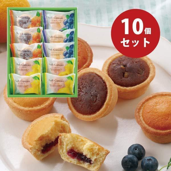 ソフトガトー 10個 中山製菓 スイーツ 個包装 焼き菓子 クッキー 詰め合わせ 〈SGP-10〉