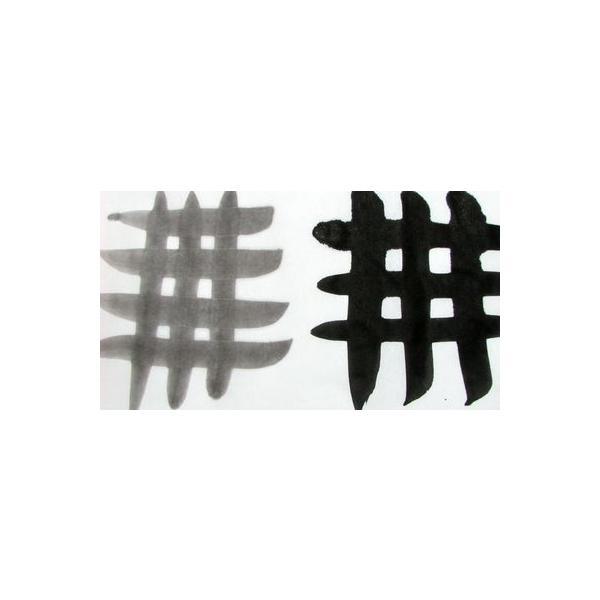 漢字半紙 白鷺 1000枚 にじみが少なく 墨色が美しい半紙 漢字練習半紙|jyukodo|02