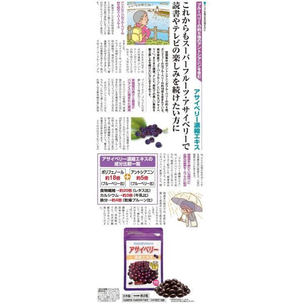 アサイベリー濃縮エキス 1袋(60粒) アサイーベリー サプリ - ほほえみ元気クラブ|k-1ba|02