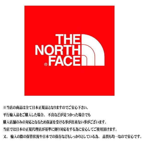 THE NORTH FACE ザ ノースフェイス NP11935 マウンテンレインテックスジャケット Mountain Raintex Jacket 2色 メンズ 正規販売店【通常商品】|k-aiya|12