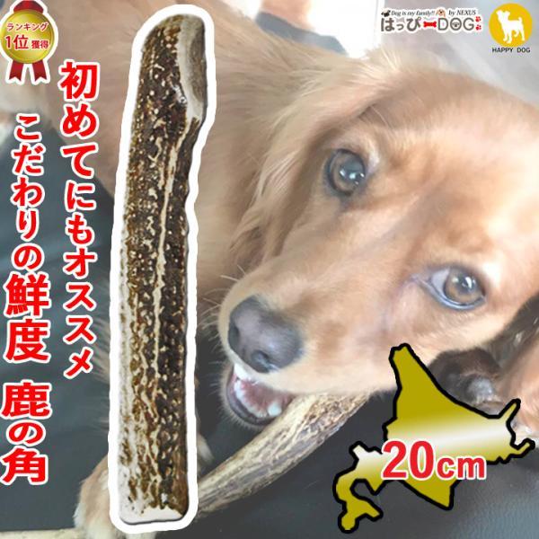  鹿の角 半割 北海道 鹿角 犬のおもちゃ 犬 犬用 噛む おもちゃ おやつ ドッグガム デンタルケ…