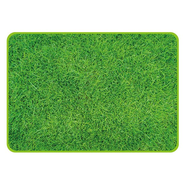 パール D-2335 ピクチャー レジャーシート 70×100cm シバフ(芝生)