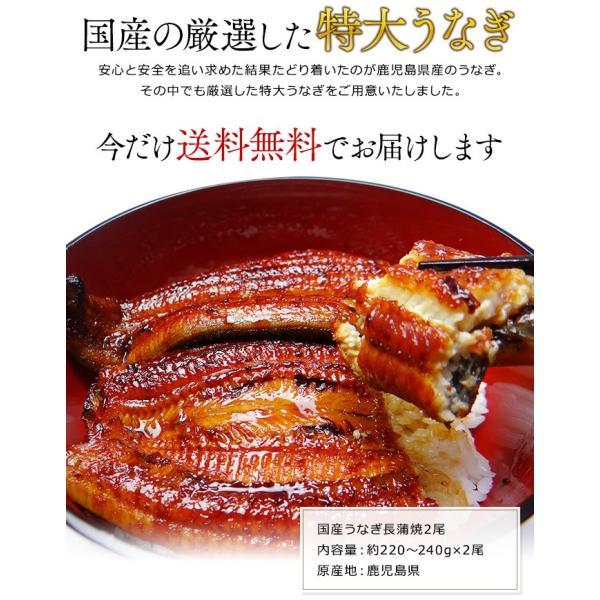 うなぎ 国産 鰻 長 蒲焼 鹿児島県産 220g ~ 240g × 2尾 ウナギ ギフト お祝い 贈答品|k-foods|02