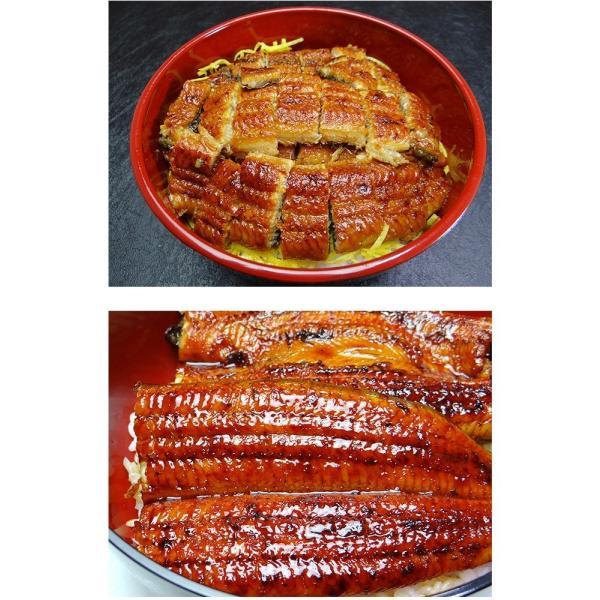 うなぎ 国産 鰻 長 蒲焼 鹿児島県産 220g ~ 240g × 2尾 ウナギ ギフト お祝い 贈答品|k-foods|04