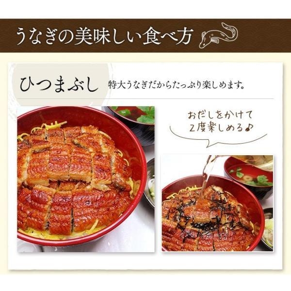 うなぎ 国産 鰻 長 蒲焼 鹿児島県産 220g ~ 240g × 2尾 ウナギ ギフト お祝い 贈答品|k-foods|05