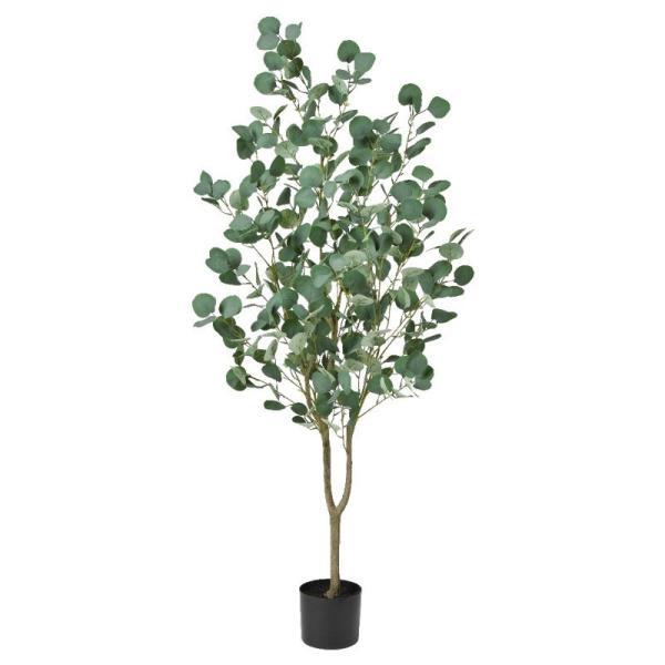 asca ユーカリ(ポット付) フェイクグリーン 観葉植物 造花