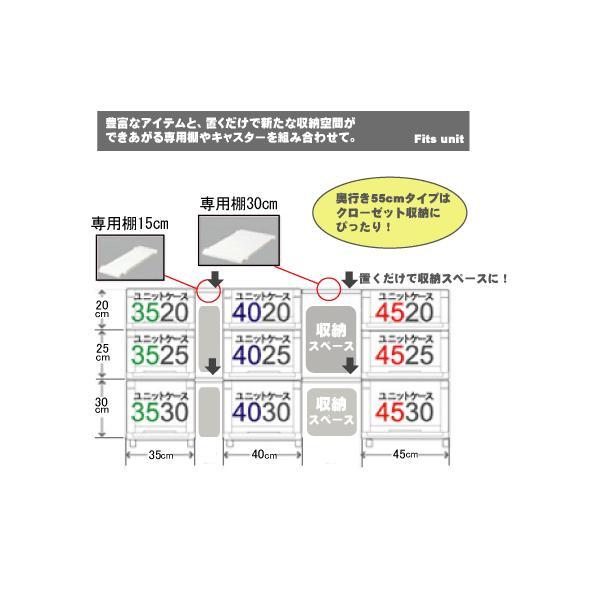 【期間特価】 収納ケース 天馬 Fit's フィッツユニットケース 4520 2個組  衣装ケース 収納ボックス TENMA 4904746438881-002|k-mori|03