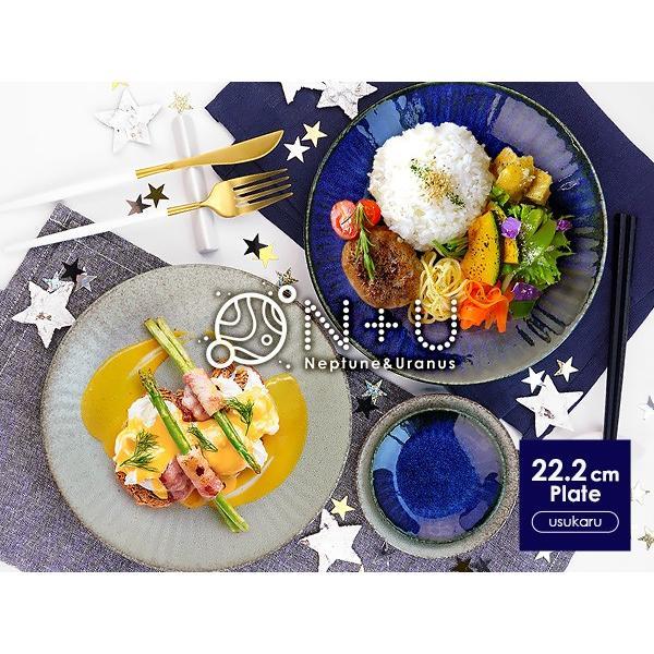 【選べる2色】 大皿 22.2cm 7寸皿 ネプチューン&ウラヌス 日本製 美濃焼 陶器 和食器 お皿 ディナープレート パスタ皿 ブルー グレー カフェ おしゃれ 北欧風 k-s-kitchen 17