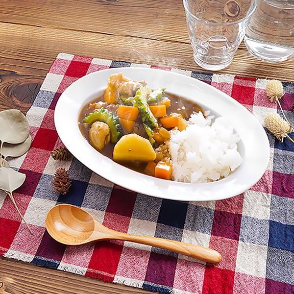 ちょっと深さのある オーバルリムプレート 25.6cm アウトレット 日本製 美濃焼 陶器 洋食器 子供食器 白い食器 中皿 楕円皿 マルチプレート おしゃれ カフェ風|k-s-kitchen