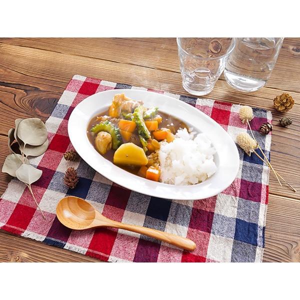 ちょっと深さのある オーバルリムプレート 25.6cm アウトレット 日本製 美濃焼 陶器 洋食器 子供食器 白い食器 中皿 楕円皿 マルチプレート おしゃれ カフェ風|k-s-kitchen|02