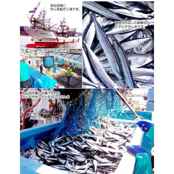 さんま 秋刀魚 10尾  1尾130g以上  海鮮 送料無料 お取り寄せ ご当地グルメ 気仙沼直送 サンマ 生|k-sozaiya|05
