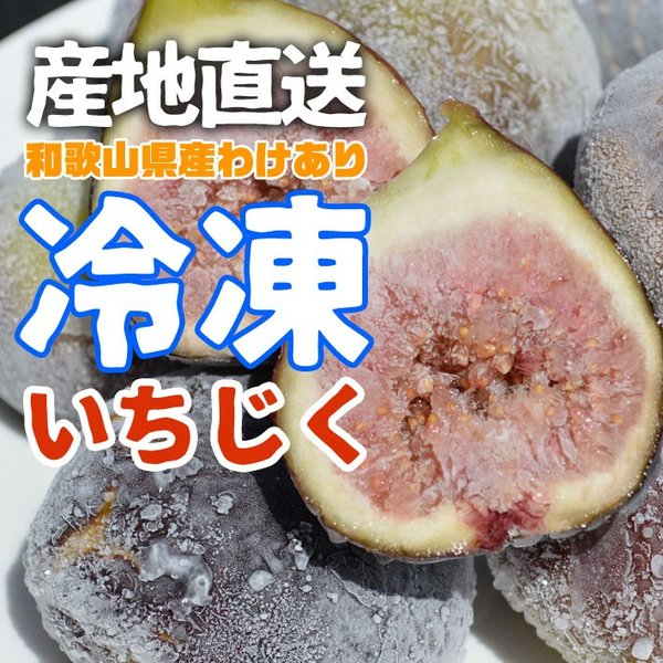 訳あり ご家庭用 フルーツ王国 和歌山県産 産地直送 冷凍いちじく 500g クール便 送料無料|k-yorozuya