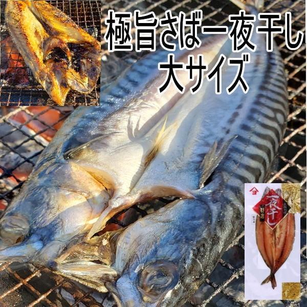 極旨サバ一夜干し お買い得2尾セット 北海道広尾町加工 大サイズ さば干物