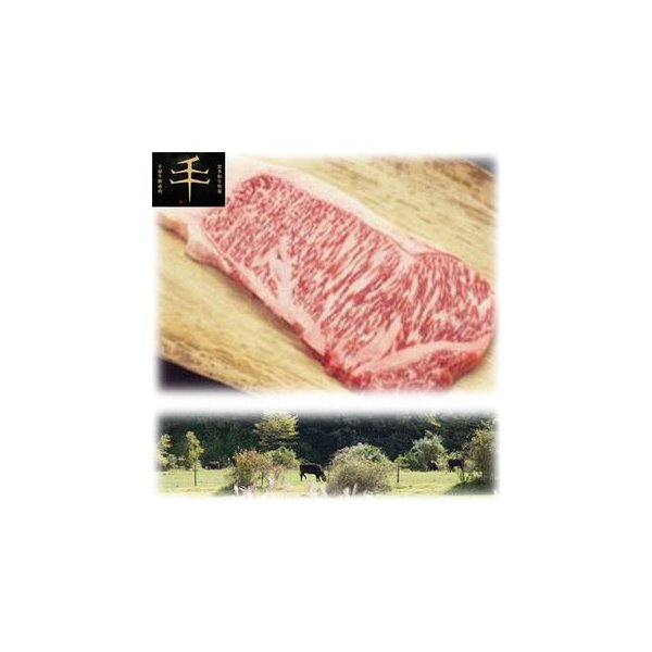 【納期目安:1週間】TSR-600 千屋牛「A5ランク」ステーキ(ロース)肉 600g(300g×2) (TSR600)