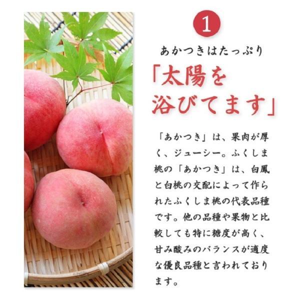 ふくしま桃の和菓子 6個入箱 / ふくしまプライド。体感キャンペーン(その他)対象商品|kadenyubeshi|04