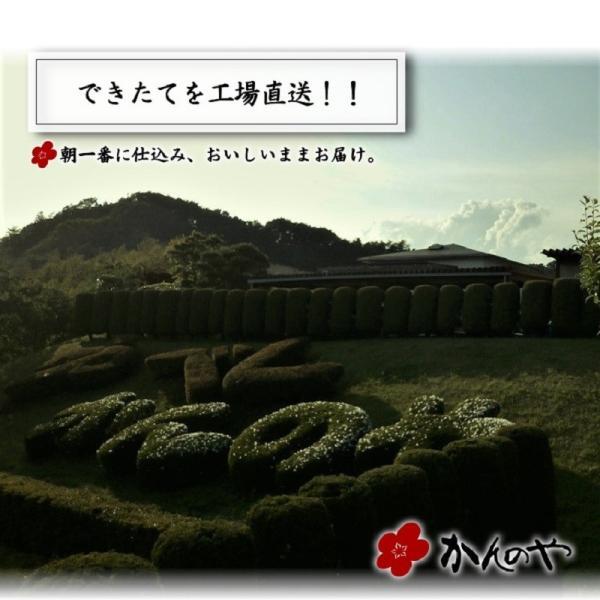 三春ゆべし 3本 / ふくしまプライド。体感キャンペーン(その他)対象商品|kadenyubeshi|14