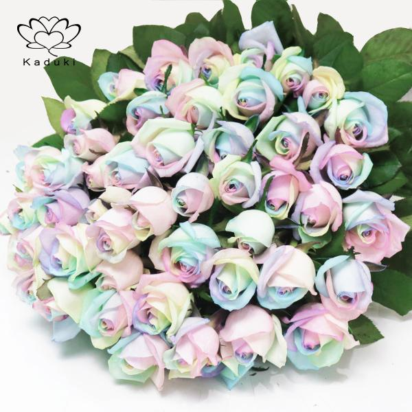 レインボーローズ ピュアパステル 花束 50本 フラワーギフト 生花 虹 バラ 安心のメーカー直販