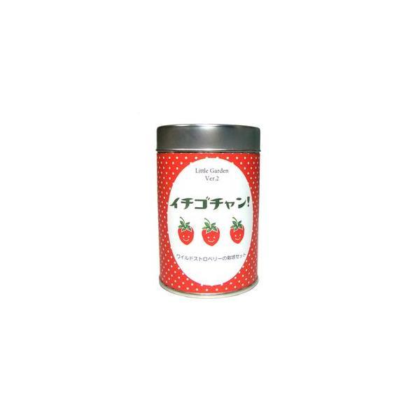 リトルガーデンVer.2 イチゴチャン 栽培キット 栽培セット[02]