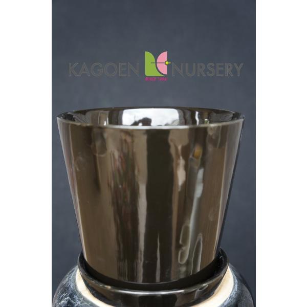 陶器鉢 タリーズ ラウンド ノアール 花、ガーデニング 園芸用品 鉢 (4054) kagoen-nursery 02