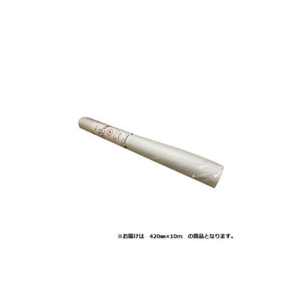 オストリッチダイヤ 1ミリ方眼紙ロールセクション 420mm×10m 1本 41