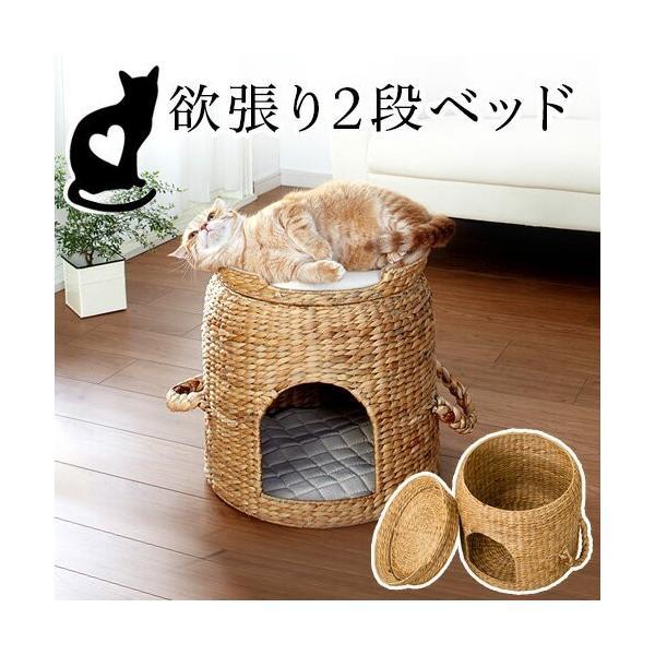 猫ちぐら ベッド付き猫ちぐら 天然素材 猫ベッド 2段ベッド 猫用つぐら 稚座 gws