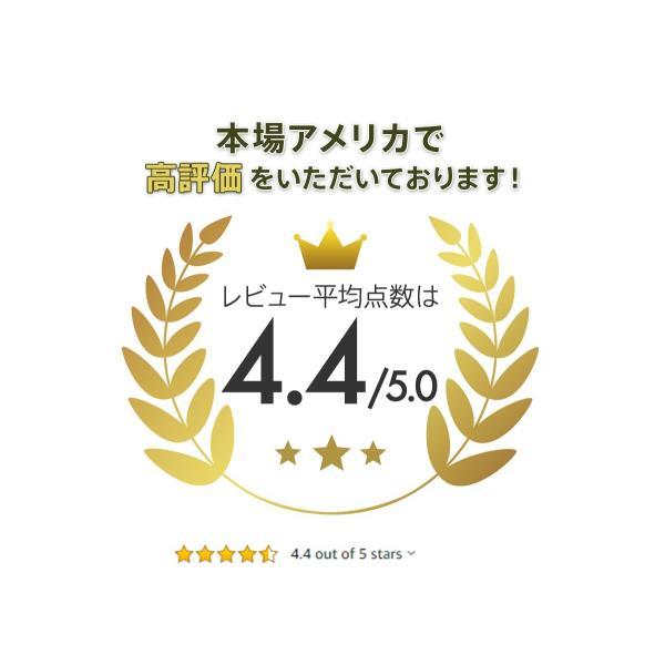クーラーボックス 保冷力 大型 おすすめ 最強 保冷性が高いクーラー シベリアンクーラーボックス SIBERIAN COOLERS アウトドア 42.5L|kagukouboukuraya|04