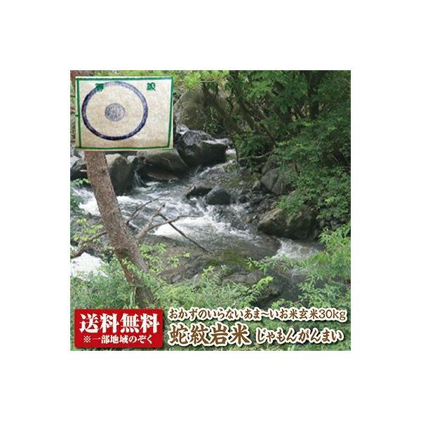 【令和2年産】【送料無料】蛇紋岩米玄米30kg 【コシヒカリ】【こしひかり】【じゃもんがんまい】