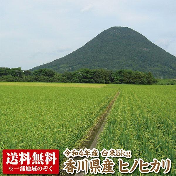【令和2年産】【送料無料】香川県産ヒノヒカリ白米5kg 【ひのひかり】