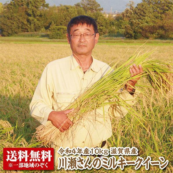 【新米】【送料無料】【令和3年産】滋賀県産多賀さんのミルキークイーン10kg 【特別栽培米】【生産者限定米】