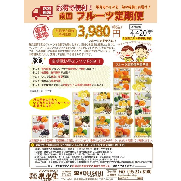 旬の果物直送!フルーツ定期便【送料無料】6ヶ月