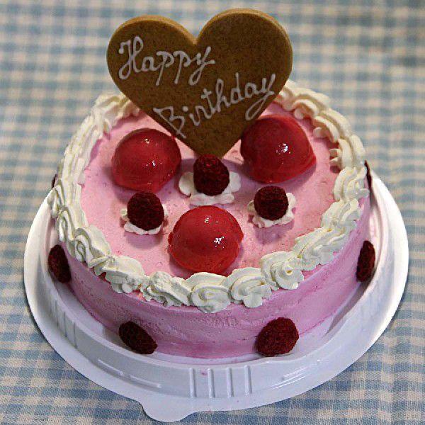 お誕生日ハッピーバースデー ラズベリーアイスケーキ 誕生会 ホームパーティー プレゼント カード付き アイスクリーム 魁ジェラート