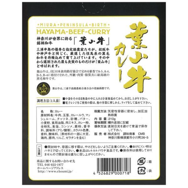 葉山牛カレー  210g×1食 中辛 カレー レトルト 神奈川県産黒毛和牛 国産 欧風 レストラン デミグラスソース 贈り物 贈答品 鉄腕DASH 鉄腕 ダッシュ DASH|kaigunsan|03