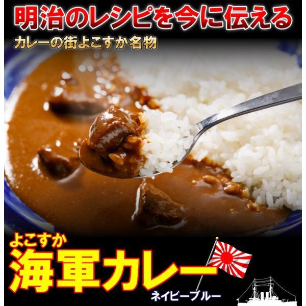 よこすか海軍カレー ネイビーブルー 4食×黒船シチュー2食セット(6食分) 鉄腕DASH 鉄腕 ダッシュ DASH|kaigunsan|02