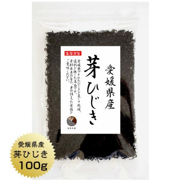 ひじき 愛媛県産 芽ひじき 100g 国産 乾燥 愛媛県産地から原料を買付け自社製造で仕上げた一品