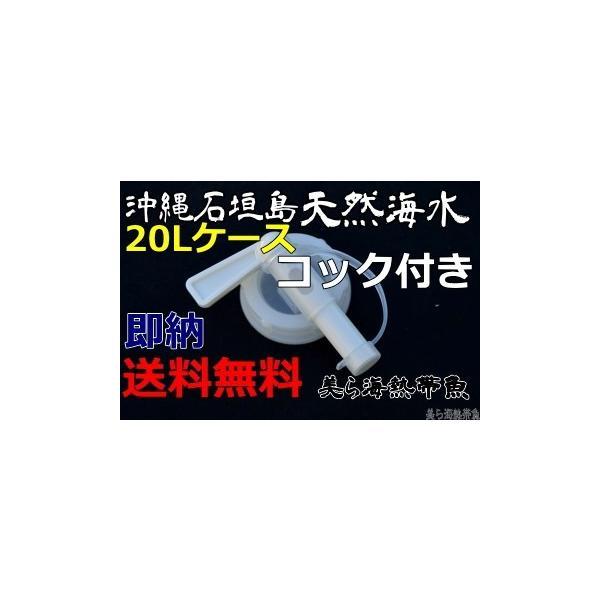 コック付き沖縄石垣島の天然海水20リットル汲みたて直送(送料無料)【美ら海熱帯魚】|kaisui-okinawa