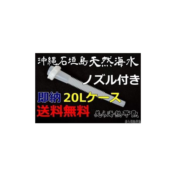 ノズル付き沖縄石垣島の天然海水20リットル汲みたて直送(送料無料)【美ら海熱帯魚】|kaisui-okinawa