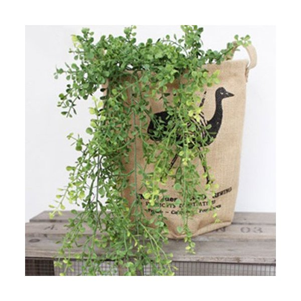 RoomClip商品情報 - いなざうるす屋 フェイクグリーン 丸い葉っぱのモフモフ 緑 ガーランド 人工観葉植物 壁掛け