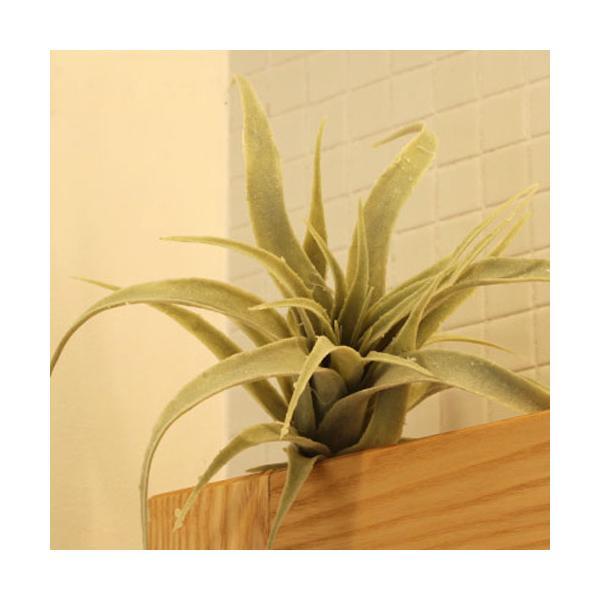 RoomClip商品情報 - いなざうるす屋 フェイクグリーン ティランジア A 緑 エアープランツ チランジア ガーランド 人工観葉植物
