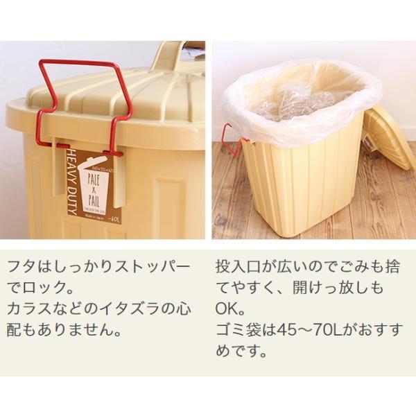 ゴミ箱 おしゃれ 分別 ペールペール 屋外 大型 45リットル ゴミ袋 ふた付き ペールxペール PALE x PAIL 60L 日本製|kajitano|05