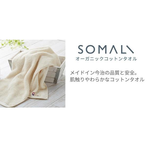 SOMALI 洗濯用ギフトセットC  そまり 洗濯用洗剤 ギフトセット SOMALI 引き出物 引出物 出産 結婚祝い 快気祝い 内祝 内祝い 引越し ご挨拶|kajitano|04