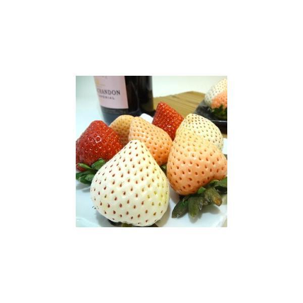 3色いちご詰合せ 大粒12入り あまおう 雪うさぎ 淡雪 白い苺 赤い苺 ピンク苺 の3品種が入ったイチゴ セット  お歳暮