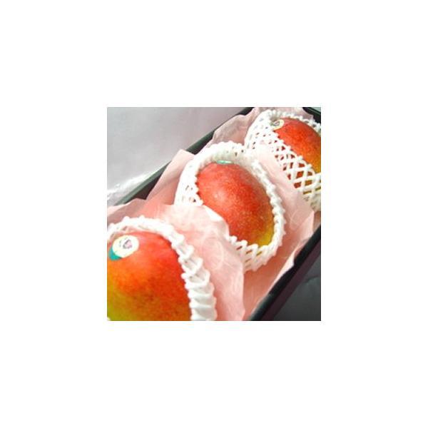 メキシコ産アップルマンゴー 3個入り (化粧箱入り)   出荷予定:4月上旬〜 父の日 ギフト