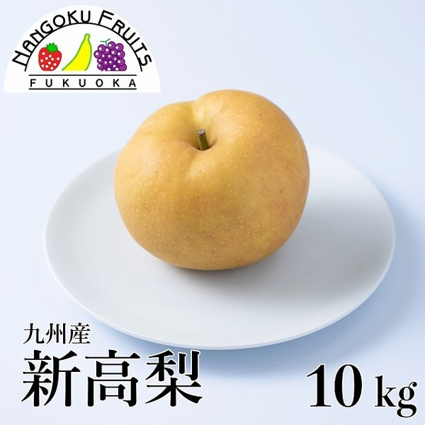 九州産新高梨 約10kg (10-16玉)
