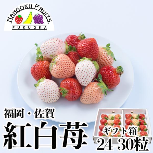 【予約販売】福岡・佐賀産 紅白いちご (あまおう&白いちご)ギフト箱(24〜30粒)